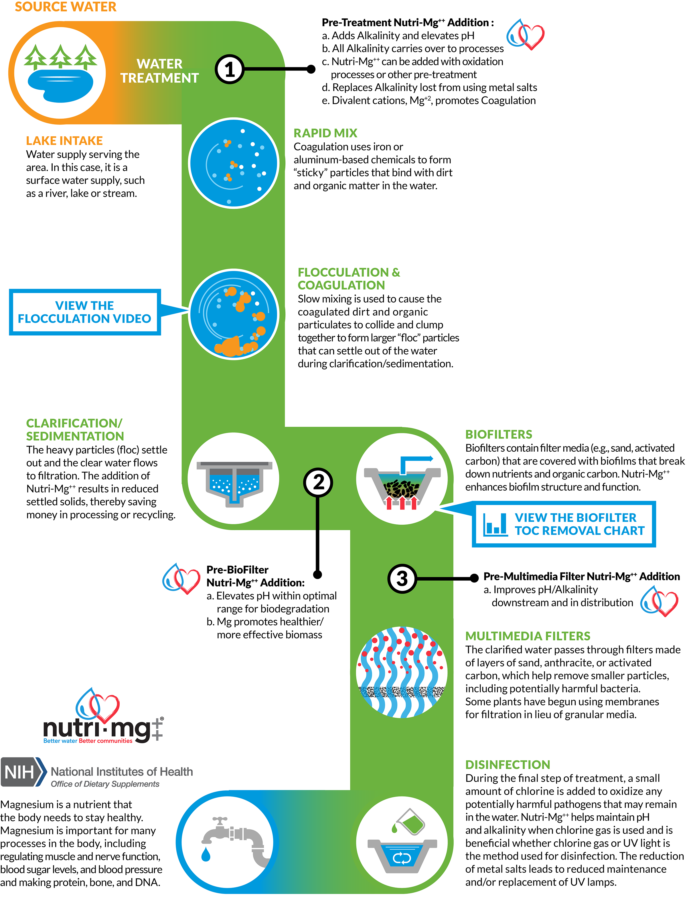 Nutri-Mg Infographic
